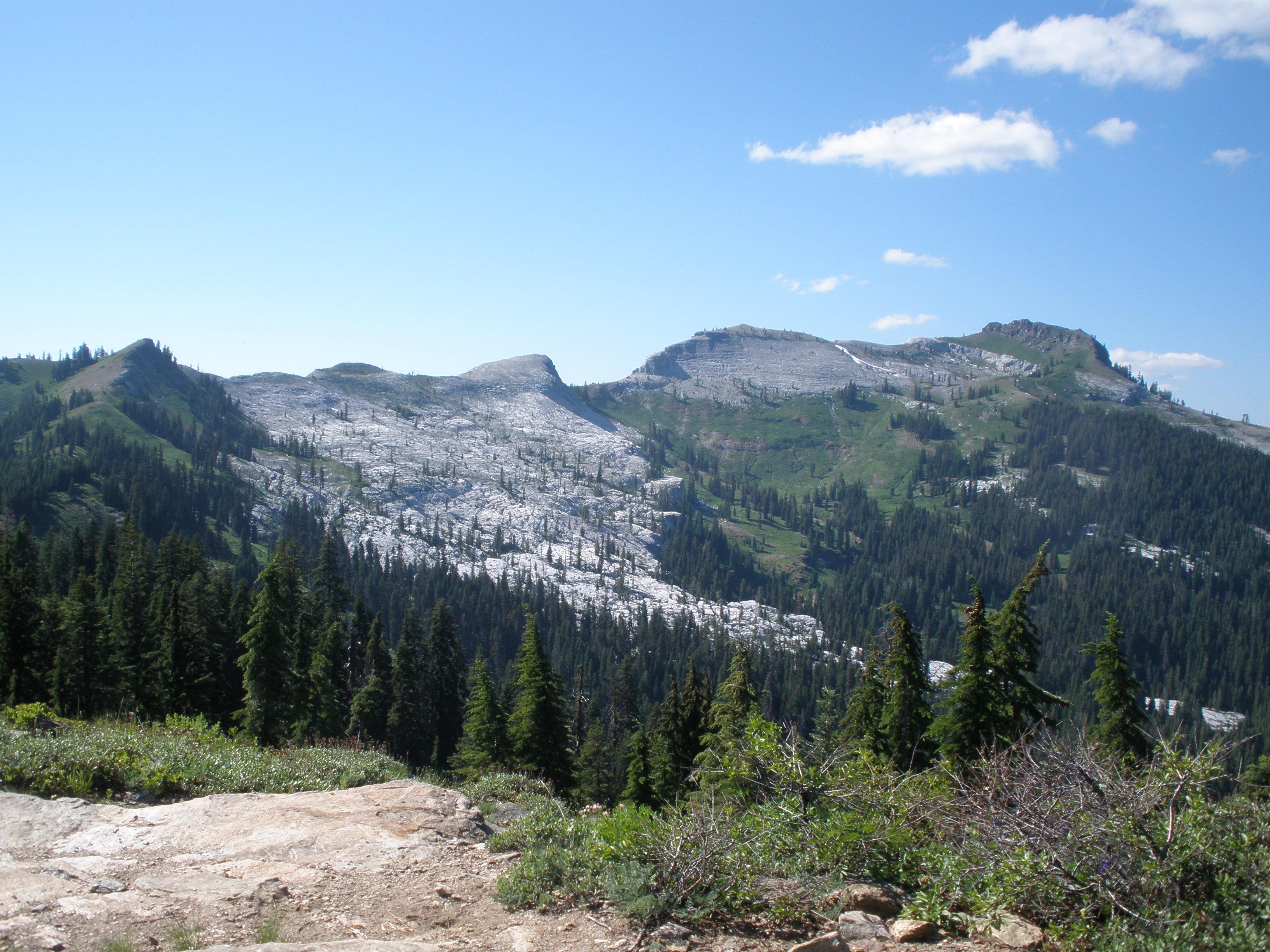Marble Mountain Wilderness Wildrambles